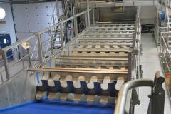 Flaminex-Food-Processing-lines-1